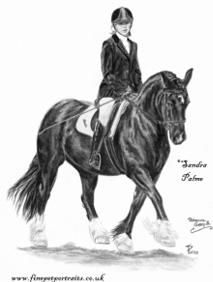 Pferde Kohle