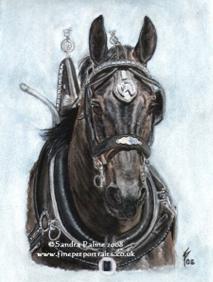 Pferde Aquarell