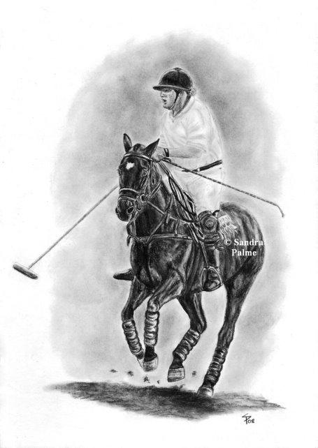 Polo Pony Kohlezeichnung