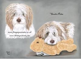 Französischer Schäferhund