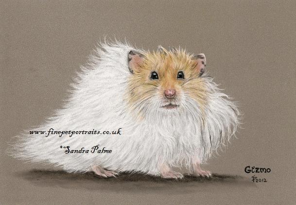 Hamster Portrait Pastell
