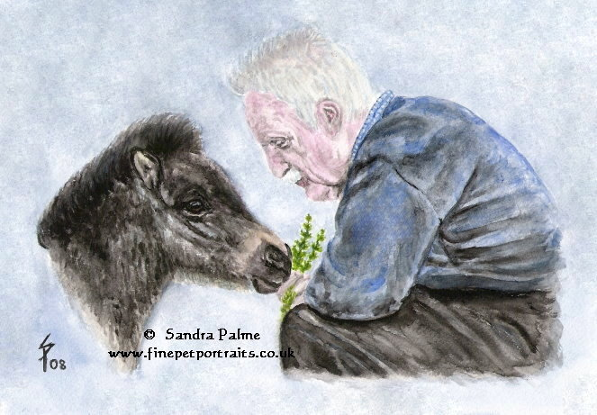 Mann und Shetlandpony-Fohlen