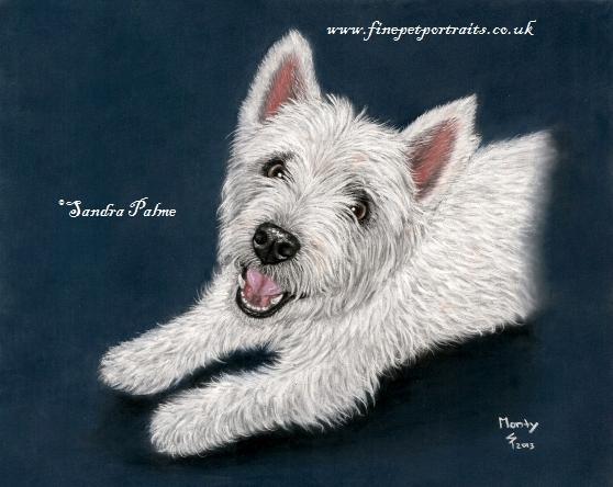 Westie Hunde-Portrait
