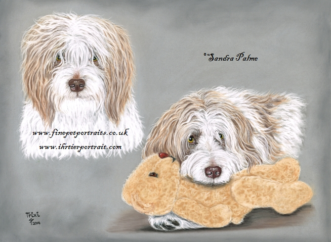 Hundeportrait Collage